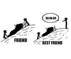Best Friend.jpg